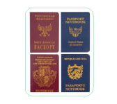 Passeport notebooks by La Chaise Longue.