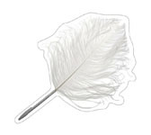 PEN OSTRICH'S FEATHER. MAISON MARTIN MARGIELA.
