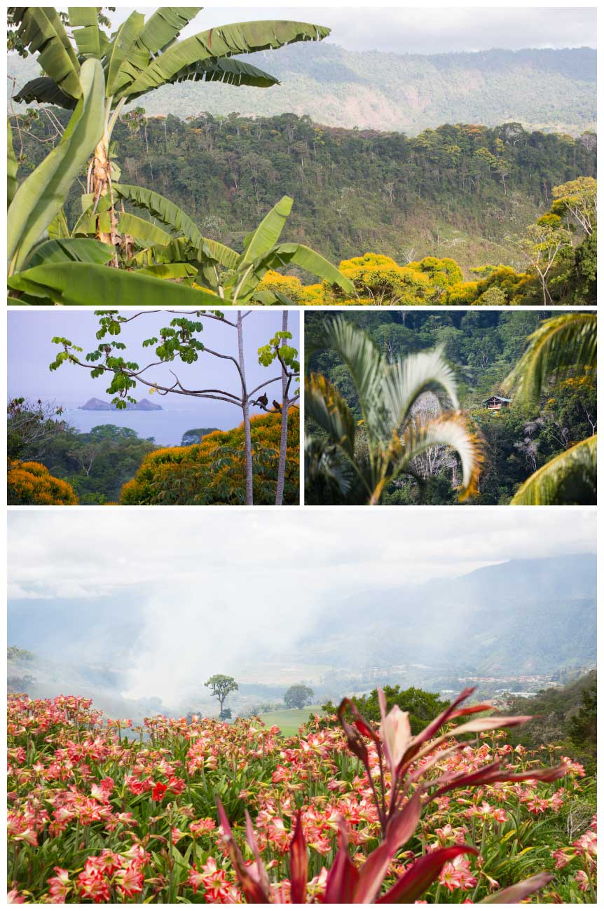 Une Balade au Costa Rica. Photo 1 : Playa Ballena, Pacifique sud, Photo 2: route du volcan Irazu, Photo 3 : Piedra Ballena, Parc National Marin de Ballena, Pacifique sud, Photo 4: Cordillère de Talamanca Plume Voyage Magazine #plumevoyage @plumevoyagemagazine @plumevoyage © F SPIEKERMEIER