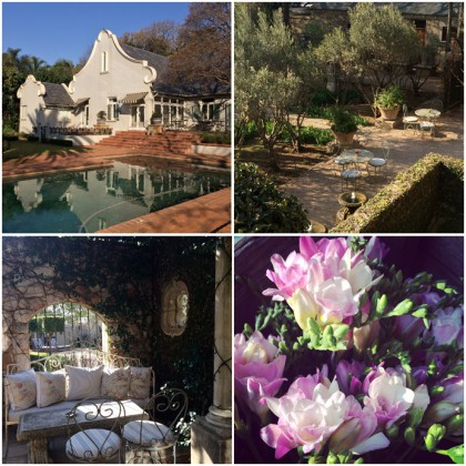Morrell's Boutique Estate, South Africa © Marie Le Fort