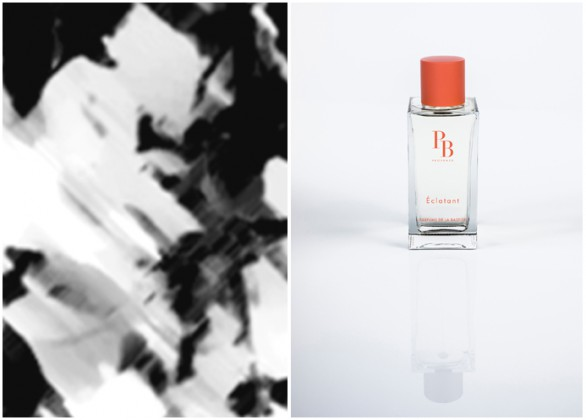Photo 1 : Inspiration d' Eclatant, Photo 2 : Eclatant. © Parfums de Bastide