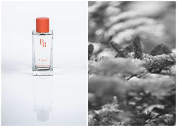 Photo 1 : Ardent, Photo 2 : Inspiration d'Ardent. © Parfums de Bastide