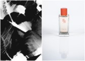 Photo 1 : Inspiration d'Exquise, Photo 2 : Exquise. © Parfums de Bastide