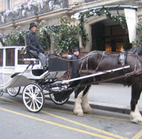 A carriage ride at Hôtel Lancaster