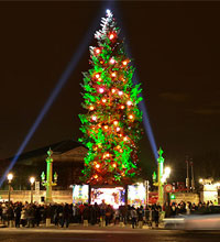 The largest Christmas tree in Europe is in Paris