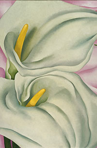 Georgia O'Keeffe , Two Calla Lilies on Pink © DR@Plume Voyage Magazine
