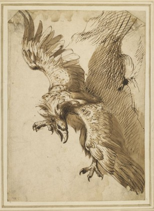 Study for Prometheus, 1612, Frans Snyders On loan from The British Museum, London Donated by Count Antoine Seilern - Plume Voyage Magazine