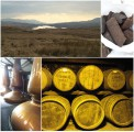 Islay and Jura Peat © Béatrice Delamotte