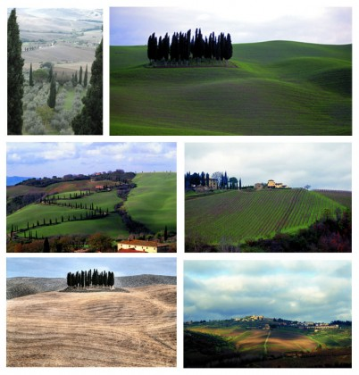 From right to left and from top to bottom, photo 1: The gray of olive trees, marked with a green line almost black of the green cypresses in Montalcino © Delamotte, 2 :  Sentries at the top of the gentle hills © Vito Arcomano / Fototeca ENIT, 3: Cypress point the way ... © Vito Arcomano / Fototeca ENIT. , 4: Vines mark the hills of their bright green © Vito Arcomano / Fototeca ENIT , 5: Such as a Morandi canvas © DR  and 6 :Spotlight near Siena © Vito Arcomano / Fototeca ENIT