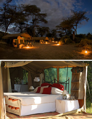 Safari experience with Leading Hotels